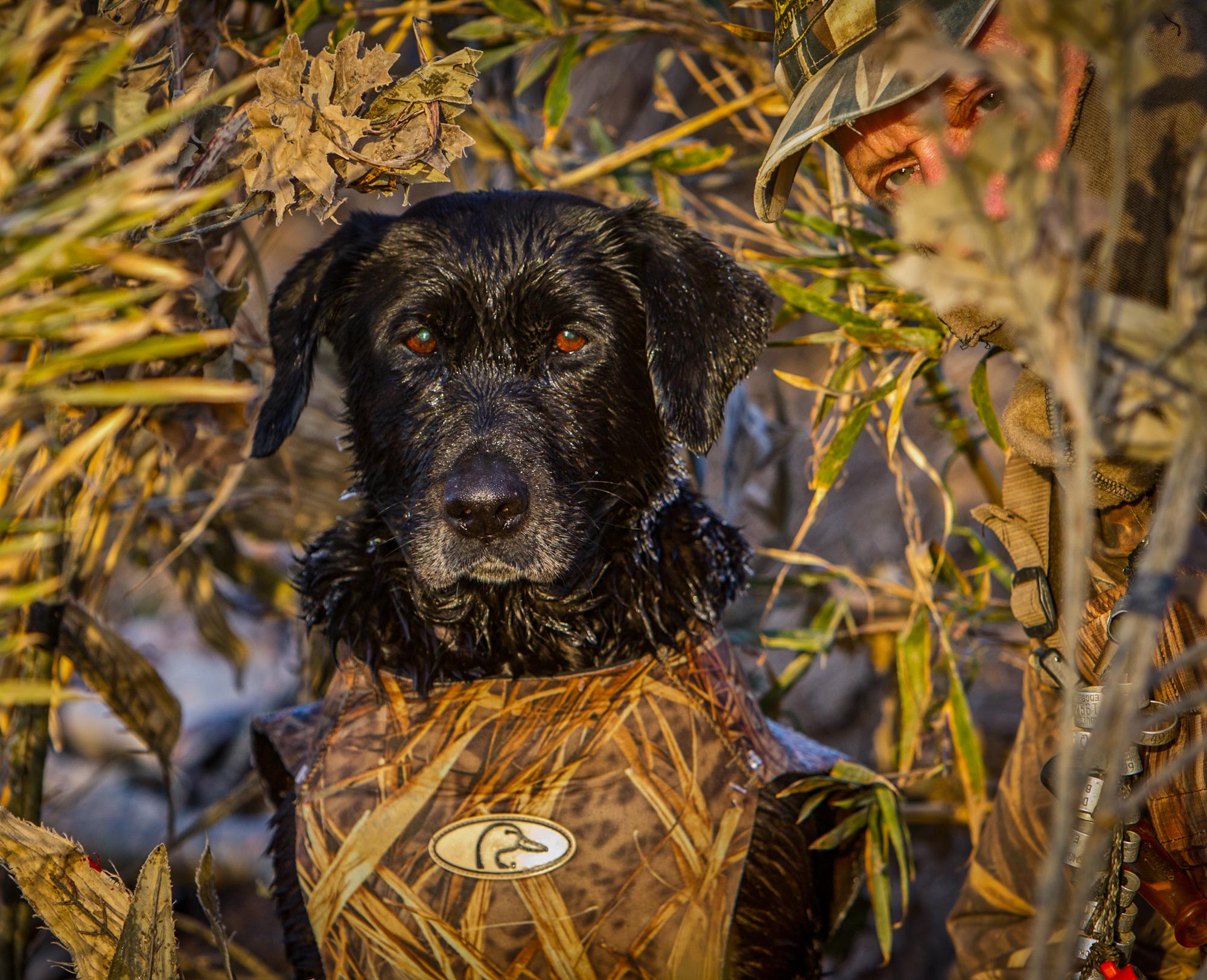 rick-meoli-commercial-photographer-outdoor-animal-lifestyle-repheads-20
