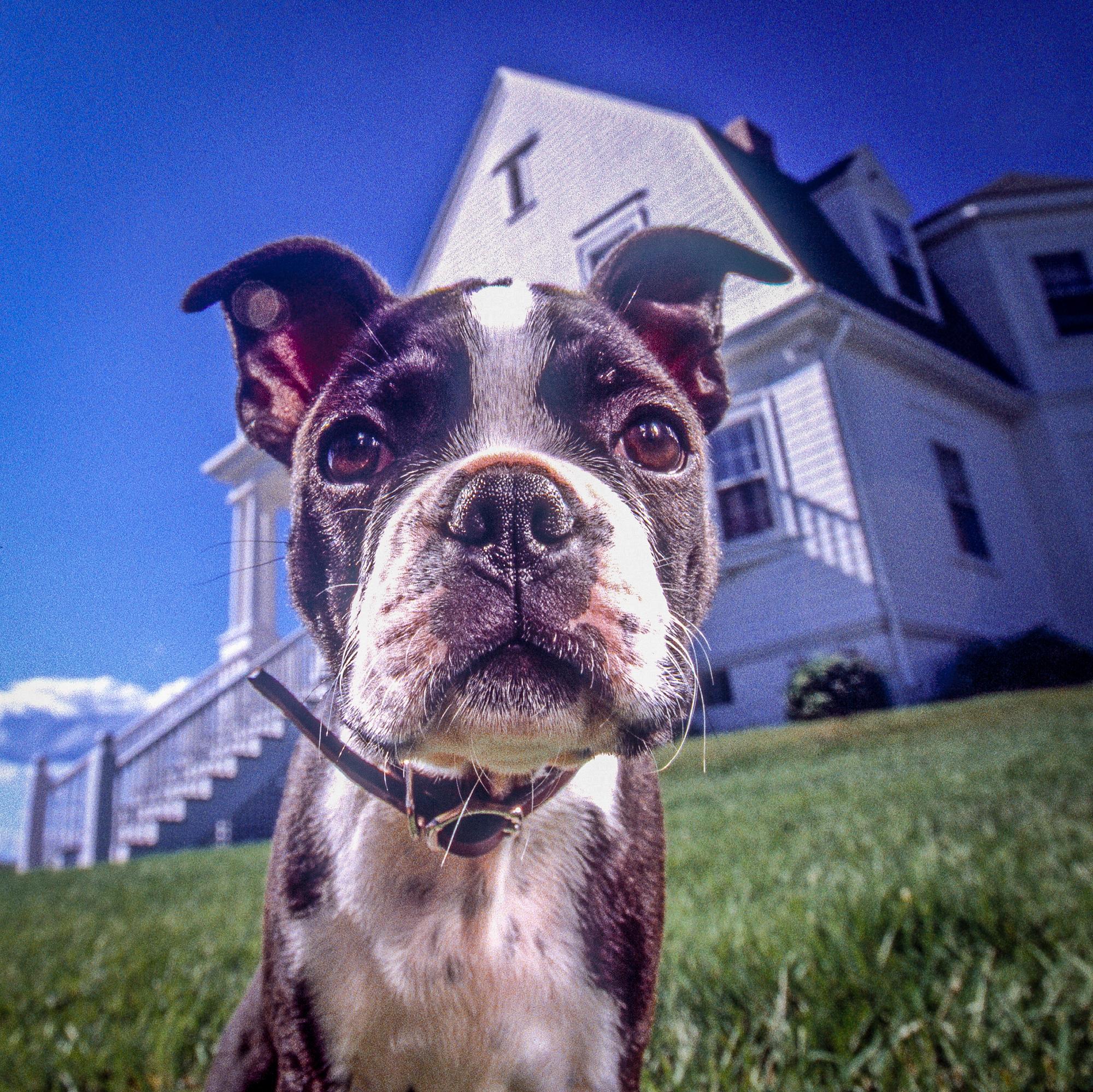 rick-meoli-commercial-photographer-outdoor-animal-lifestyle-repheads-44